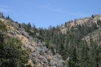 San Gabriel Wilderness