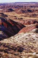 The Painted Desert  8023