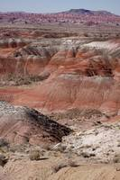 The Painted Desert  8024