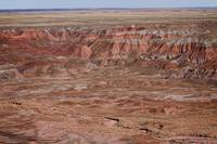 The Painted Desert  8064