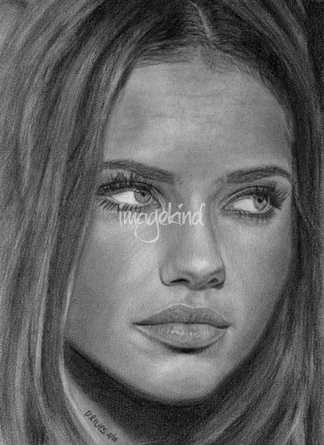 Adriana lima portrait pencil drawing by david rives