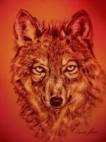 Wolf Red
