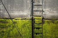 Ballard Locks Ladder