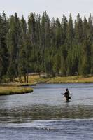 Flyfishing the Yellowstone River