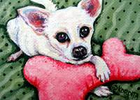 White Chihuahua with Pink Fuzzy Toy