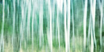 it's a matter of blues