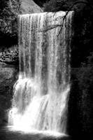 Silver Falls, Black and White