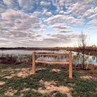 The Starting Gate by Donnie Shackleford
