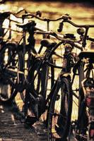 Bicycles in Amsterdam 1