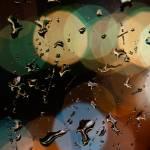 Rain drops on the window's glass Prints & Posters