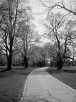 Walk in the Park BW