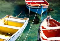 Simonstown - Colourful!