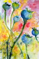Poppy Pods Botanical Watercolor Painting