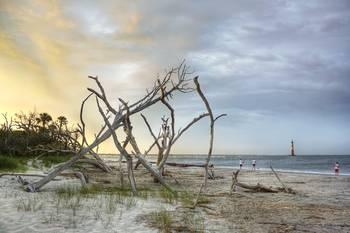 Charleston folly beach fishing by jennifer griffor for Folly beach fishing