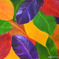 """Colorful Leaves"" by mariawilliams"
