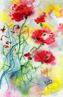 Dreamy Poppies Watercolor by Ginette