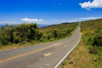 Winding road in Maui 21658