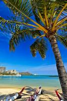 Diamond Head and Waikiki - 21558
