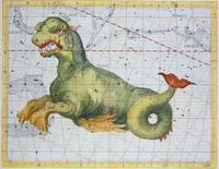 Constellation of Cetus the Whale