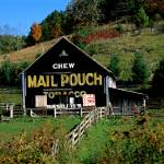 Mail Pouch Tobacco Barn Greenbrier WVA Prints & Posters