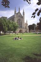 Winchester Cathedral 8 by Priscilla Turner
