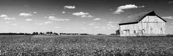 Country Panoramic