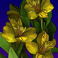Yellow Flowers Art Prints & Posters by Cheryl Rose