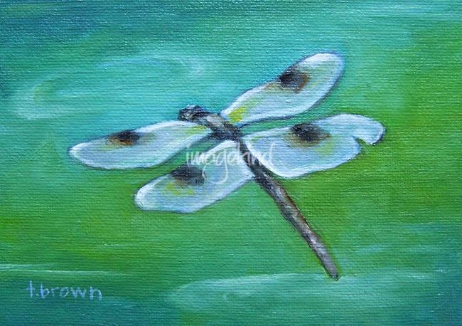 dragonfly - marley