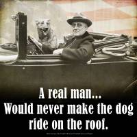A REAL man -- FDR and his dog by r christopher vest