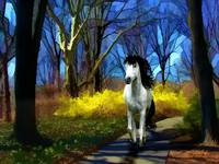 Horse in the Forest-2