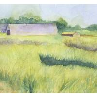 """Connecticut Barns"" by SSnyder"