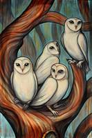 white crowded owls