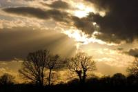 March Sky - Sunset Over Roydon