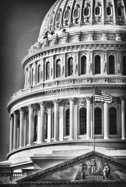 US Capitol Building in Sepia