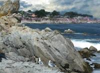 Pacific Grove Spring