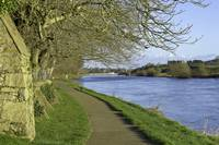 Tow-path, river Suir, Carrick-on-Suir