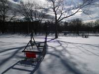 Cart in Snow