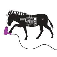 HAIRDRYING ZEBRA by Melissa Rivera - UNLEASH STUDIO