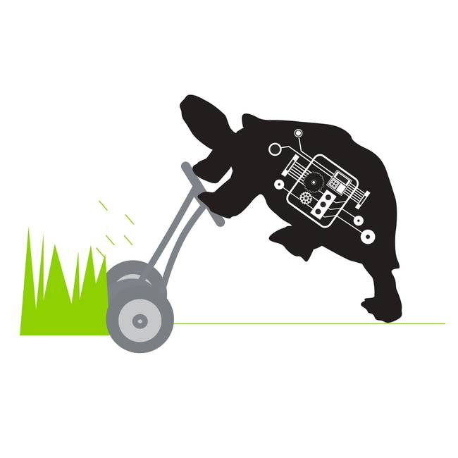 LAWN MOWING TURTLE