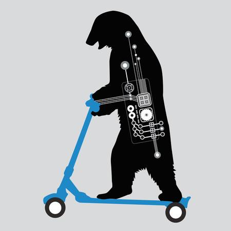 SCOOTERING BEAR