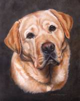 Yellow Labrador Dog Portrait Painting