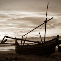 Safe Ashore by Jen Wheeler