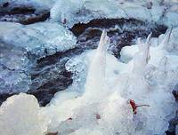 frozen creekside
