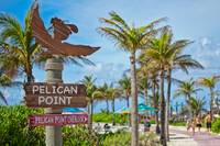 Follow the Pelican