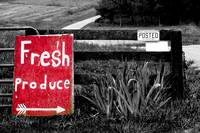 Fresh Produce ------ Oxymoron Sign