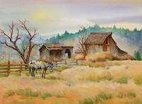 OLD BARN & APPALOOSA