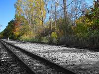 Autumn Rail Line