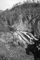 Gibbon Falls at Yellowstone