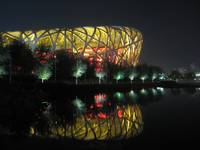 Bird's Nest Reflection