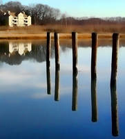 Branford River Reflections